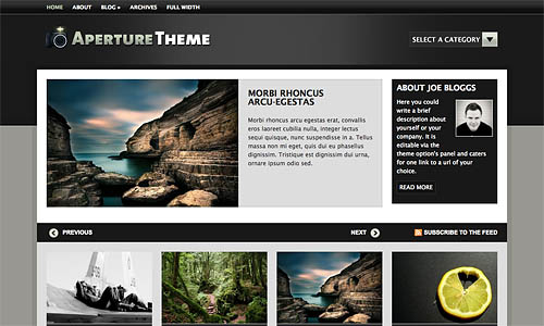aperture wordpress template