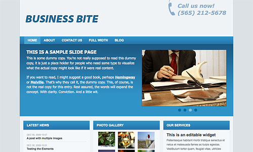 business bite wordpress template