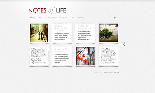 daily notes wordpress template
