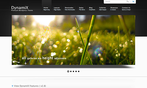 dynamix wordpress template