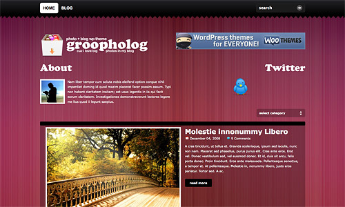 groovy photo wordpress template