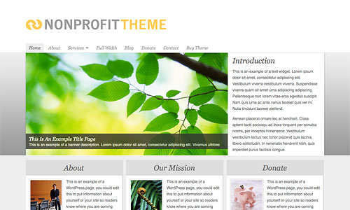 non profit wordpress template