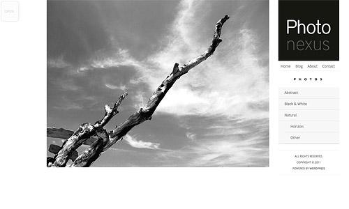 photo nexus wordpress template