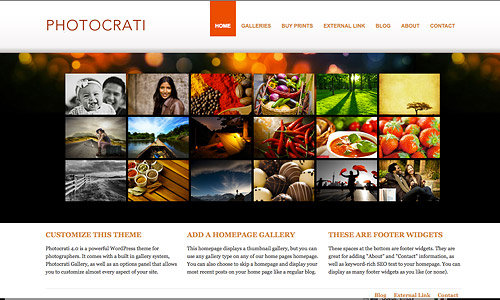 photocrati wordpress template